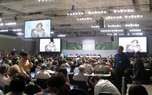 Plenaria durante la COP16 / COP16 Plenary