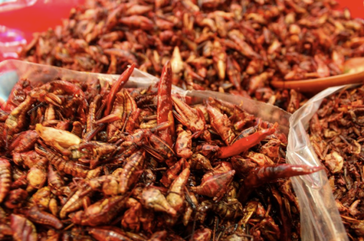 Chapulines! Over 3000 years of being an outstanding dish in the prehispanic cuisine, locals and foreigners always love trying Grasshoppers in the local markets of Oaxaca.