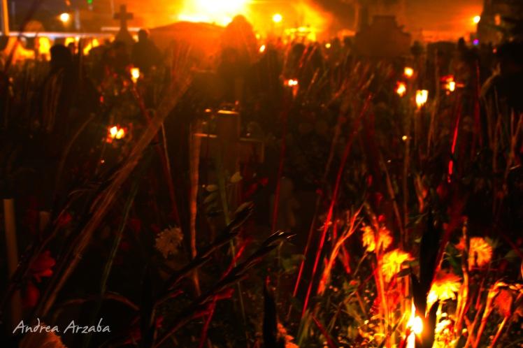 Día de muertos en Mixquic 11 (Andrea Arzaba)